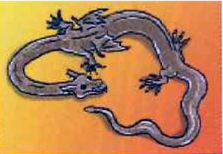 drakensoorten3